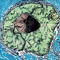 KooeyKooeyKooey. Image © DC Comics
